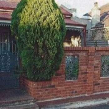 Приемы декорирования садовых ограждений