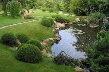 Мини-водоемы для сада